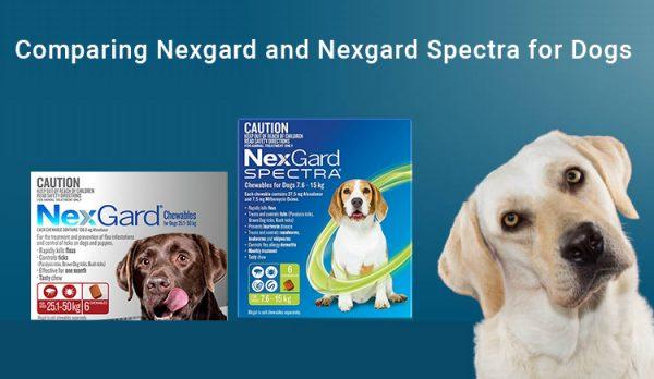 Difference between Nexgard and Nexgard Spectra