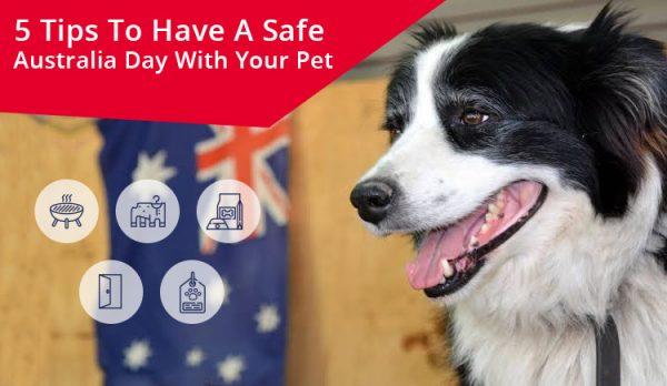 Tips to celebrate Australia's Day