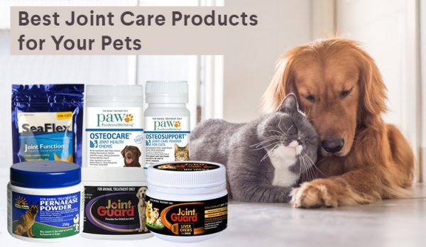 Best Joint Care Products For Cats