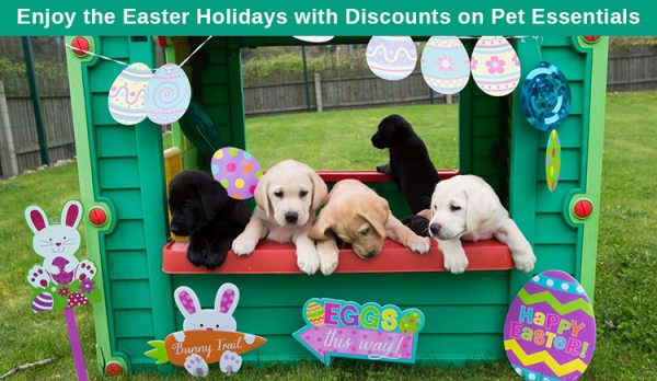 Easter Sale on Pet Supplies