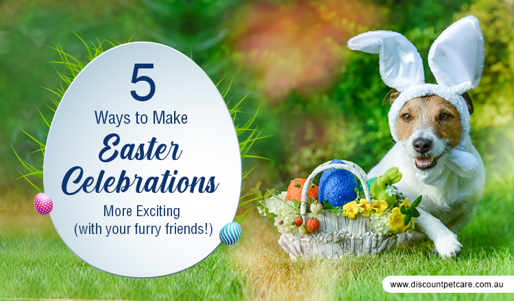 5 Ways to Make Easter Celebrations More Exciting