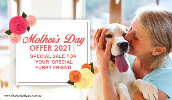 Mother's Day Offer 2021 | Special sale for your special furry friend