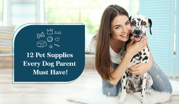 12 Pet Supplies Every Dog Parent Must Have!